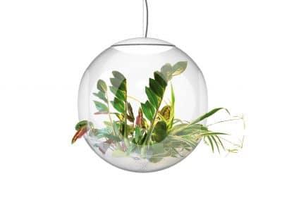 babylon-LED-plant-montage